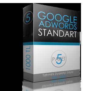 google1.png (300×300)